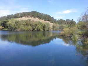 Lake at Jordan Estate
